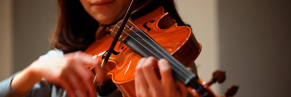 img_violin_1